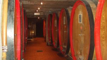Der Keller des Weingutes Erbaluna in Piemont
